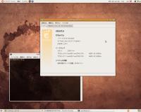 09040104-ubuntu810.jpg
